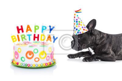 Sticker Happy Birthday Dog And Cake