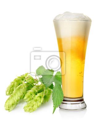 Helles Bier und Hopfen