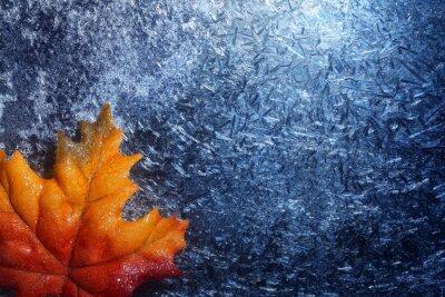 Sticker Herbst Blatt in blau Frost Hintergrund