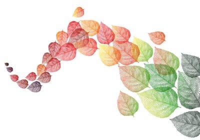 Sticker Herbst Blätter, Vektor-