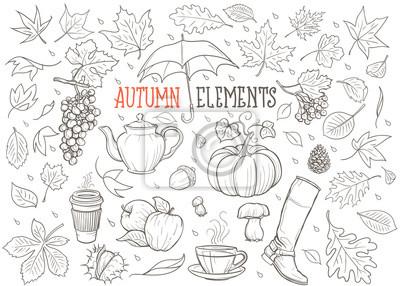 Herbst-Elemente Hand gezeichnete Illustration (Vektor)