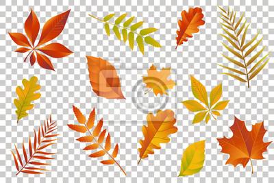 Sticker Herbst fallen Blätter isoliert auf transparenten Hintergrund. Vektor-Illustration.
