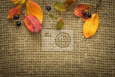 Herbst Hintergrund mit Blättern und Beeren