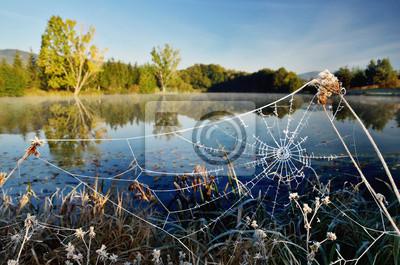 Herbstmorgen Landschaft von blauen See. Gefrorenes Spinnennetz und bunte Bäume