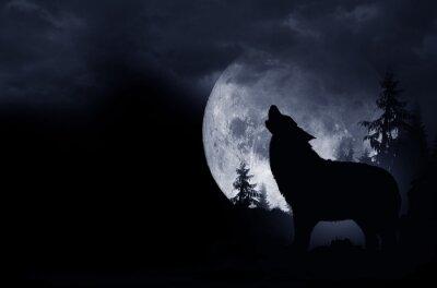 Sticker Heulender Wolf-Hintergrund