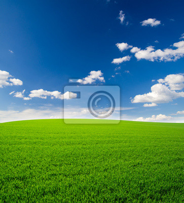 Himmel und Gras Feld Hintergrund