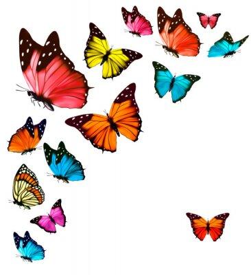 Sticker Hintergrund mit bunten Schmetterlingen. Vector.