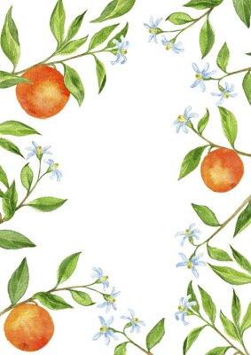 Sticker Hintergrund mit Obstbaum Zweige, Blumen, Blätter und Orangen