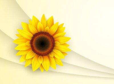 Sticker Hintergrund mit Sonnenblumen,