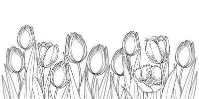 Sticker Horizontale Grenze des Vektors mit Entwurfstulpeblumen, Knospe und aufwändigen Blättern im Schwarzen lokalisiert auf weißem Hintergrund. Konturpulpen für Grußfrühlingsdesign oder Malbuch.