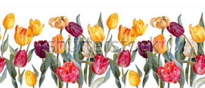 Sticker Horizontale mit Blumengrenze Bunte Tulpen auf weißem Hintergrund Botanische Illustration. Aquarellmalerei.