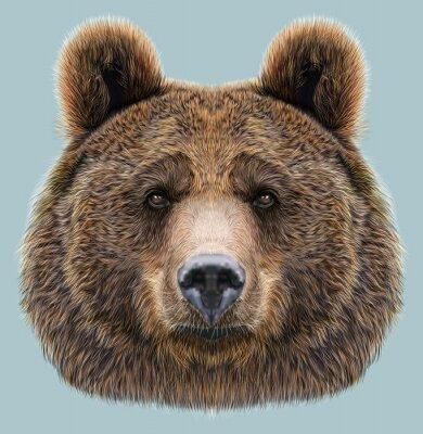 Sticker Illustrated Portrait von Bären auf blauem Hintergrund