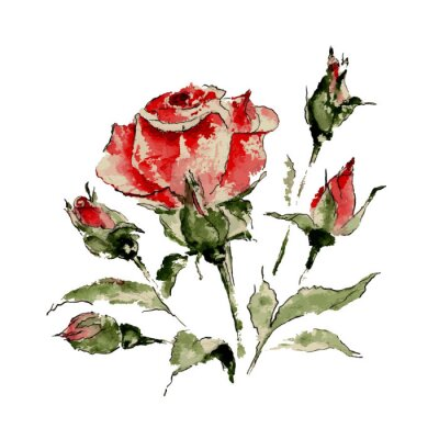Sticker Illustration der roten rose
