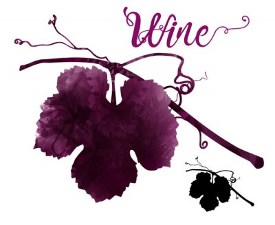 Sticker illustration of vine with tendrils. Artistic illustration with red wine stains.