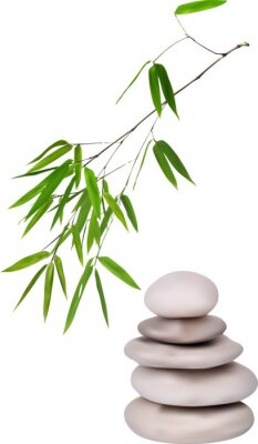 Sticker isolated grey stones and green bamboo illustration