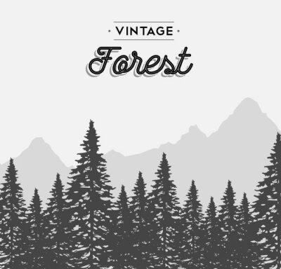 Sticker Jahrgang Wald Text-Label auf Winterbaum Landschaft