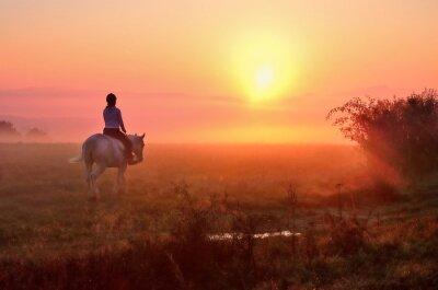 Junges Mädchen, das auf Pferd während des wundervollen ruhigen Herbstmorgens voll von Nebel und Goldlicht reitet