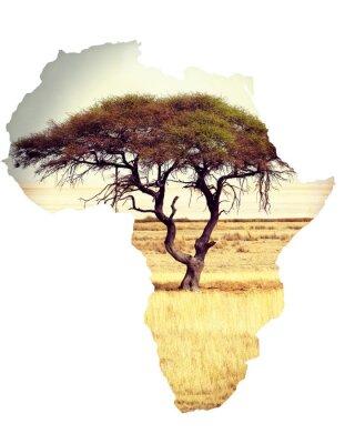 Sticker Karte von afrika kontinent konzept mit akazie