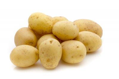 Sticker Kartoffeln auf dem weißen Hintergrund. Neue Ernte.