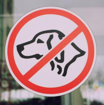 Keine Haustiere (Hunde) Schild auf Fenster des Stadtmalls