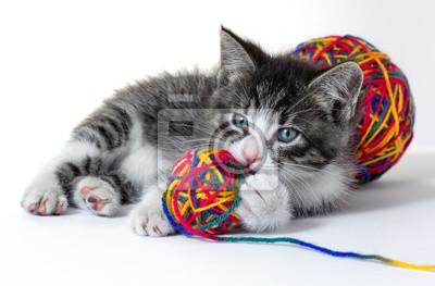 Kleines Kätzchen mit einem Wollknäuel
