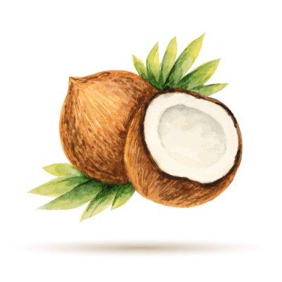 Sticker Kokosnuss