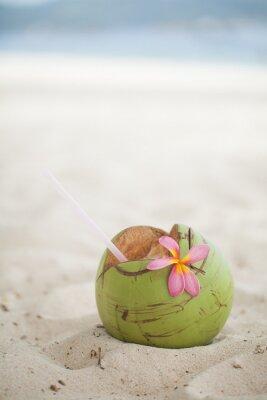 Sticker Kokosnuss auf dem Strand