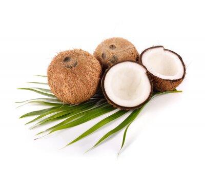 Sticker Kokosnuss auf weißem Hintergrund