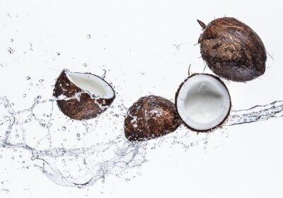 Sticker Kokosnüsse mit Wasserspritzen