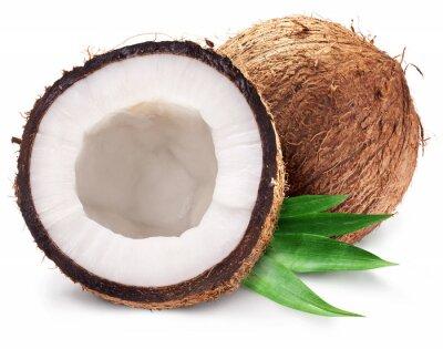 Sticker Kokosnüsse, und es ist die Hälfte mit Blättern.