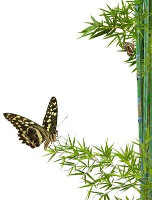 Sticker Konzept Natur Entspannungspolitik zen
