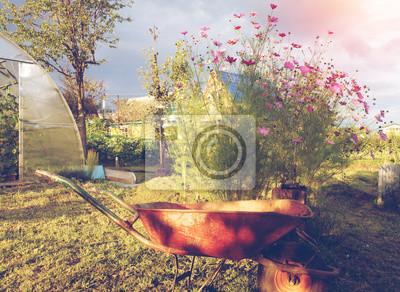 Landhaus, Garten Schubkarre auf einem Hintergrund von einem Busch von Blumen, Gewächshaus und sonnigen Tag