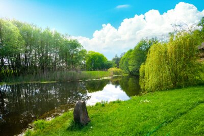 Landscape pond and field