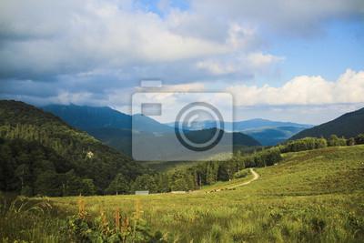 Landschaft auf dem Hügel mit grünem Gras, blauer Himmel und Wolken