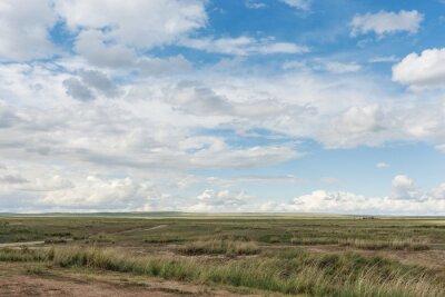 Landschaft. Einfach. Tyva. Steppe. Sonniger Sommertag. Draußen
