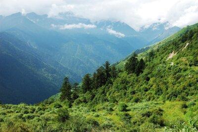Sticker Landschaft von Bergwald und Tal