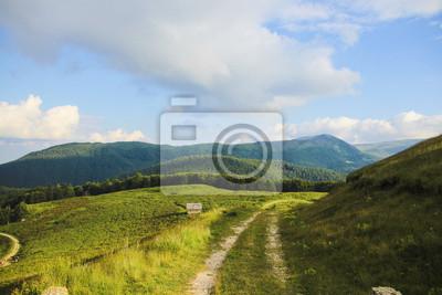 Landschaft von einem Pfad auf den Berg, grünes Gras und blauer Himmel