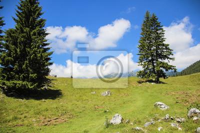 Landschaft von grünen Wiesen, blauer Himmel, Bäume und weißen Wolken