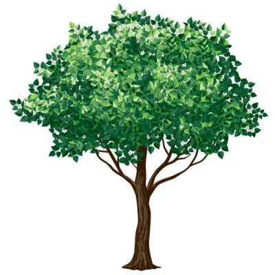 Sticker Laub Baum