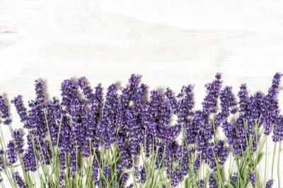 Sticker Lavendelblüten über weißem Holz Textur Hintergrund
