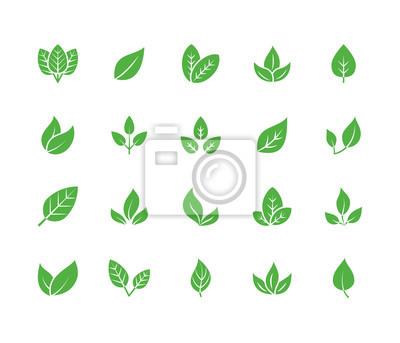 Sticker Leaf flat glyph icons. Plant, tree leaves illustrations. Signs of organic food, natural material, bio ingredient, eco emblem. Solid silhouette pixel perfect 64x64.