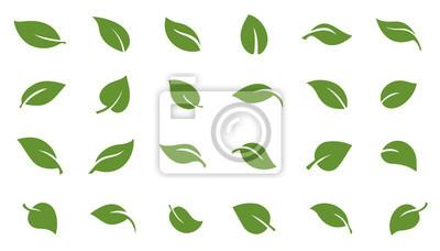 Sticker leafs green