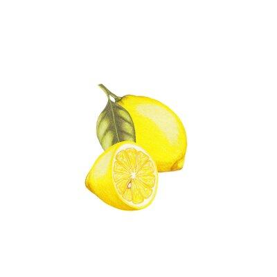 Sticker Lemon Abbildung