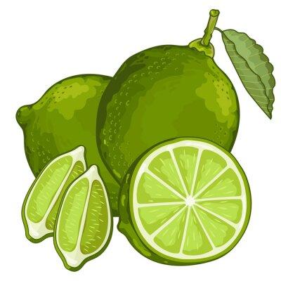 Sticker Lime isoliert auf weißem Hintergrund.