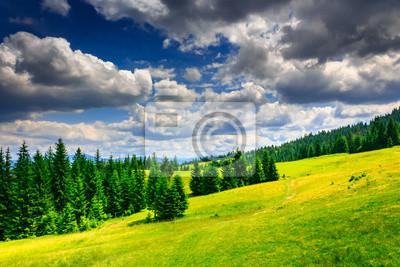 Löschen mit einem Fußweg in einem Wald an den Berghängen nach einer
