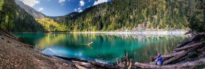 Sticker Mädchen bewundern Scenic Blick auf Berge und See in Ritsa Reserve in Abchasien