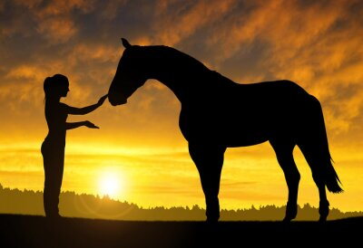 Sticker Mädchen mit einem Pferd bei Sonnenuntergang