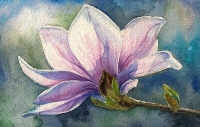 Sticker Magnolia Blossom auf branch.Watercolors.
