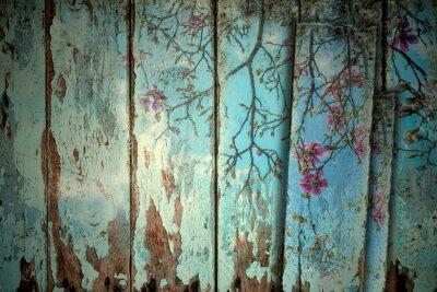 Sticker Magnolia im Frühjahr alten Hintergrund