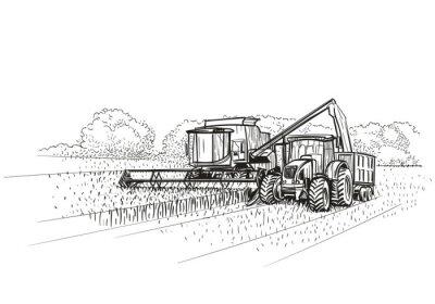 Mähdrescher und Traktor bei der Arbeit auf dem Feld. Vektor.